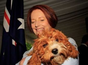 Julia Gillard and Cavoodle Reuben